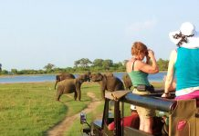 Murchison falls National Park Safari Uganda