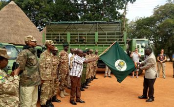 Uganda-wildlife-to-translocate-giraffes-from-murchison-falls-to-kidepo-valley-national-park