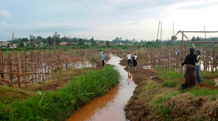 Kampala at risk of flooding as investor takes over Lubigi